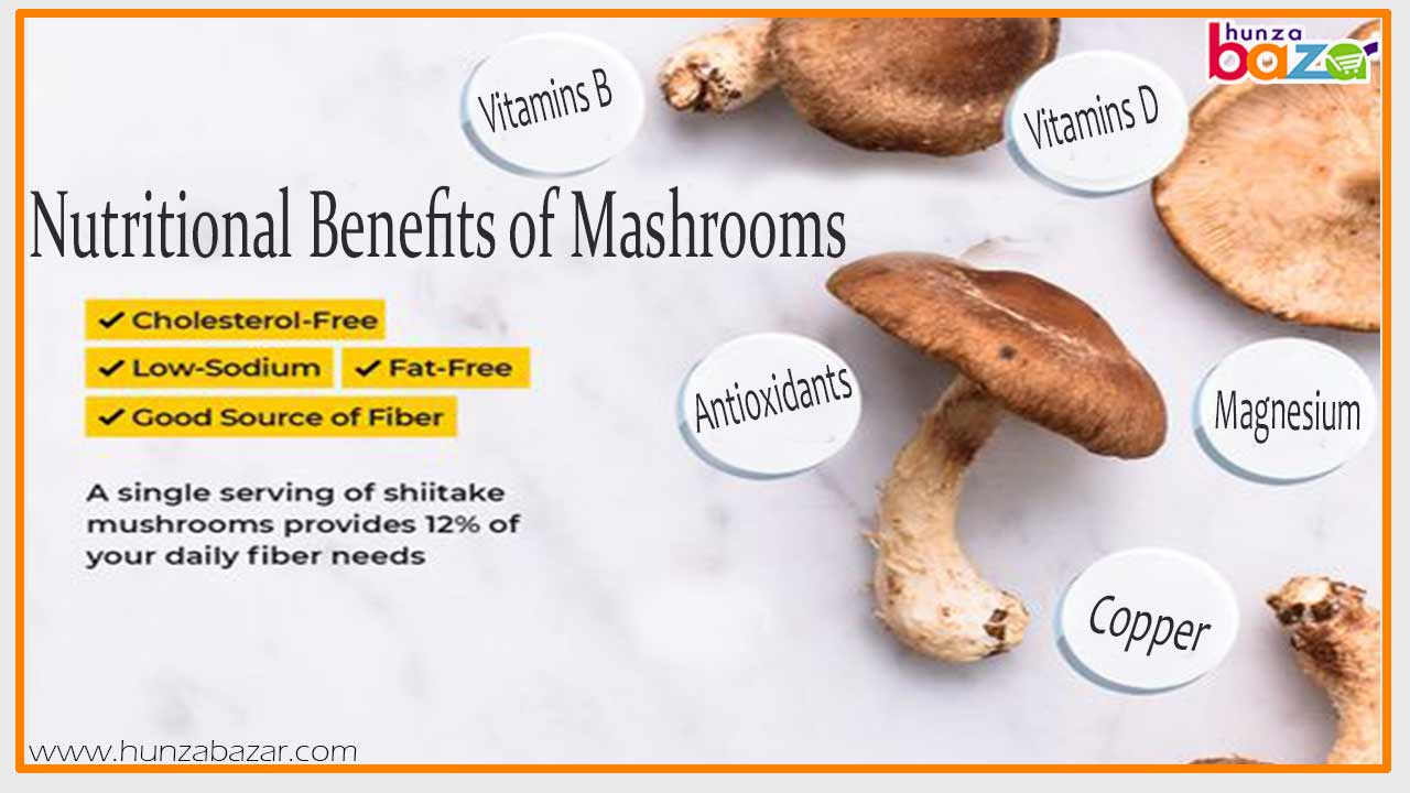 Nutritional-Benefits-of-Mashrooms