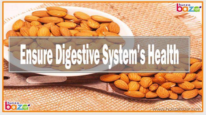 Almond Ensure Digestive System Health