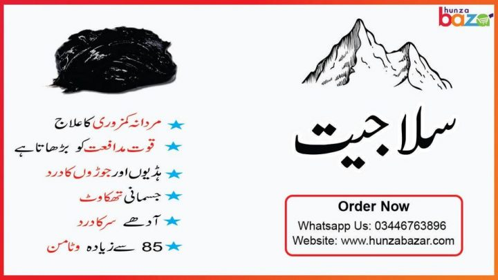 Salajeet Benefits